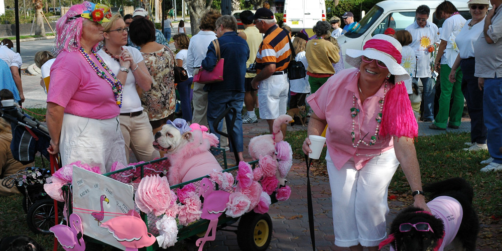 Dunedin FL Event Calendar Visit Dunedin, Fl - The Official ...