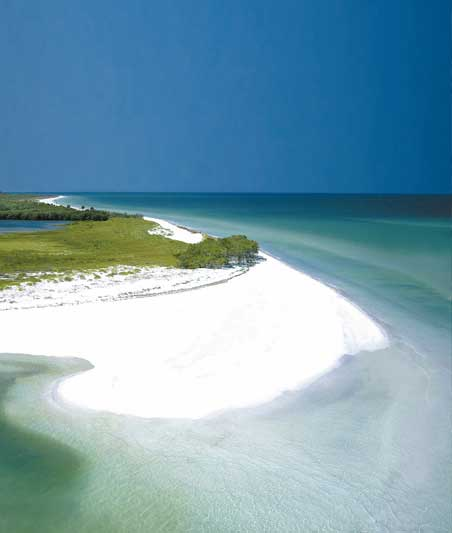 Duneidn Fl World Class Beaches
